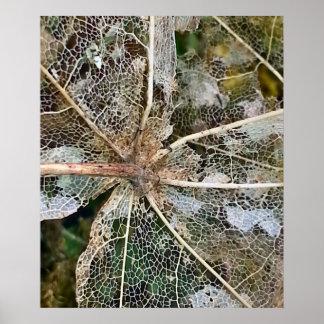 Leaf Litter Skeleton Poster