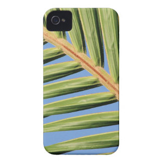Leaf of Green Case-Mate iPhone 4 Case