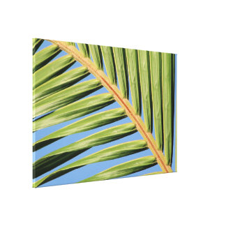 Leaf of Green Gallery Wrap Canvas