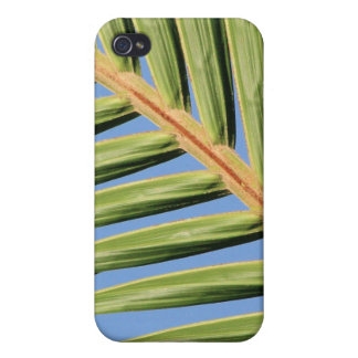 Leaf of Green iPhone 4/4S Covers