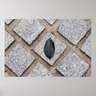 Leaf on Grid Sidewalk Print