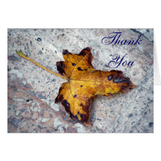 Leaf On Stone Thank You Note Card