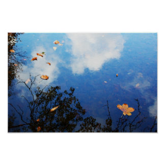 Leaf on Water Poster