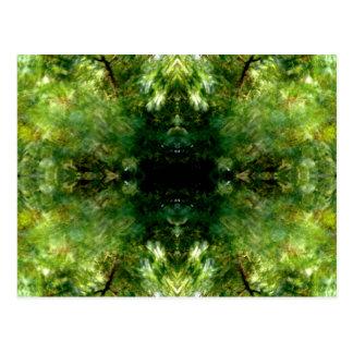 Leaf Pattern #1 Postcard