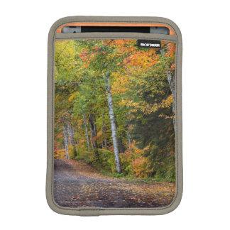 Leaf Strewn Gravel Road With Autumn Color iPad Mini Sleeves