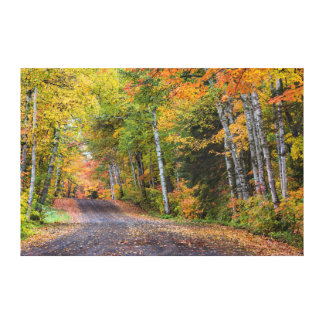 Leaf Strewn Gravel Road With Autumn Color Stretched Canvas Print