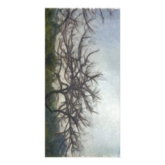 Leafless branches of a tree photo cards