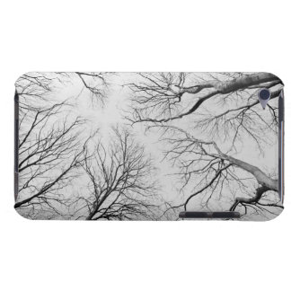 Leafless Trees in Thiepval Wood iPod Case-Mate Cases