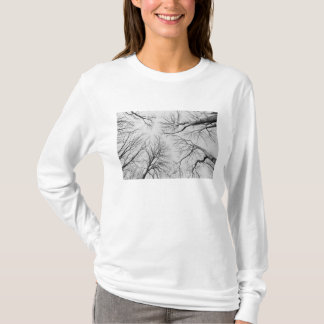 Leafless Trees in Thiepval Wood T-Shirt
