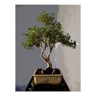 Leafy Japanese Bonsai Tree Poster