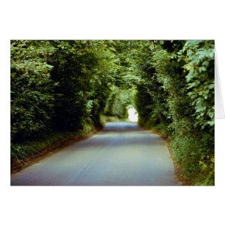 Leafy lane, Beach Cross, East Sussex, England Card