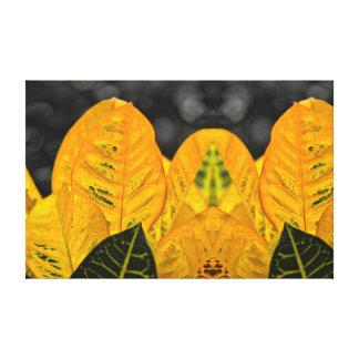 Leafy Plant Canvas Print