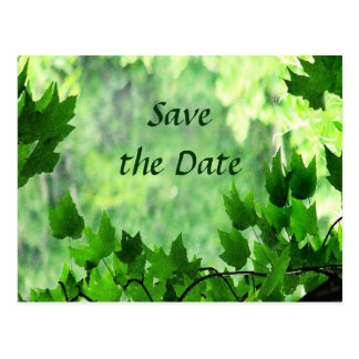 Leafy Save the Date Wedding Postcard