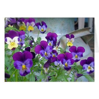 LeAnn's Violets Card
