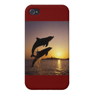 Leaping dolphins iPhone 4/4S covers