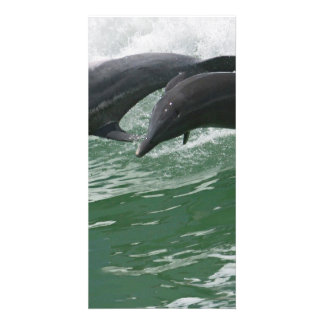 Leaping Dolphins Personalised Photo Card