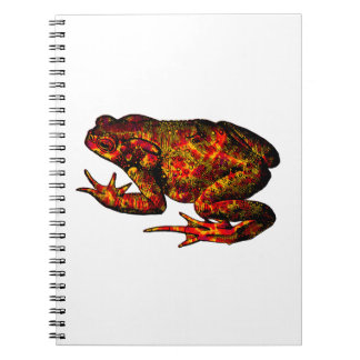 Leaps and Bounds Notebook