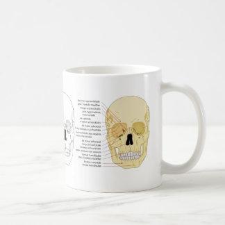 Learn the Cranium: Human Anatomy Skull Diagrams Coffee Mug