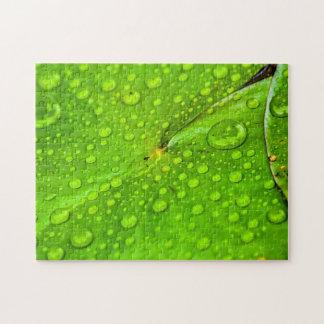 Leaves 03 Digital Art - Photo Puzzle