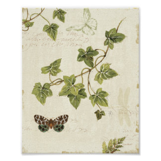 Leaves and a Butterfly Poster
