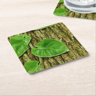 Leaves and Bark Texture Square Paper Coaster