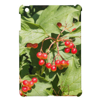 Leaves and berries  viburnum opulus close-up iPad mini covers