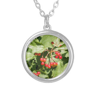 Leaves and berries  viburnum opulus close-up silver plated necklace