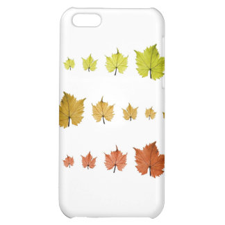 Leaves and seasons iPhone 5C cases