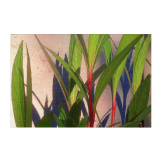Leaves and Shadows Acrylic Wall Art