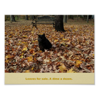 Leaves for Sale by Guiness the Cat Poster