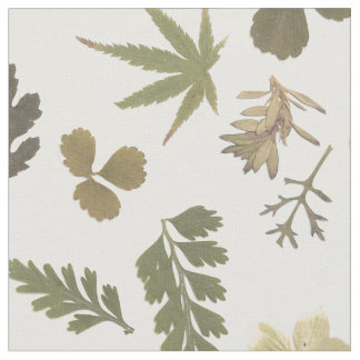 Leaves of Green Fabric