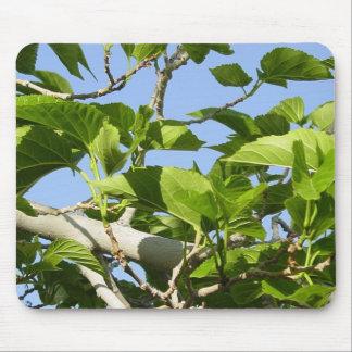 Leaves Of Summer Mousepad