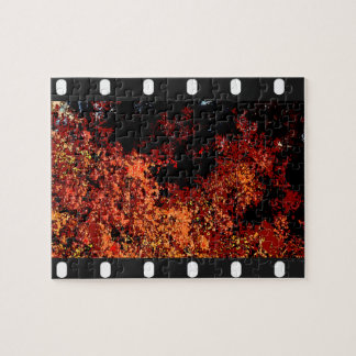 Leaves on film puzzle