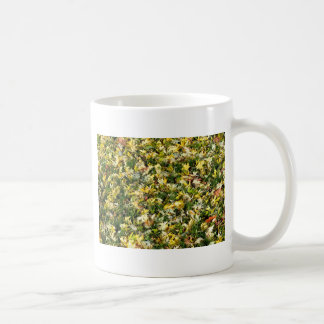 Leaves on grass mug