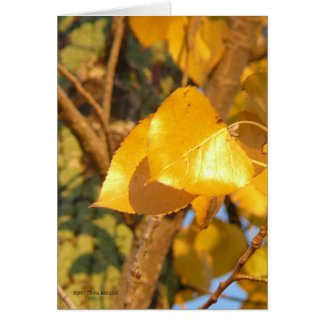 Leaves That Talk Greeting Card