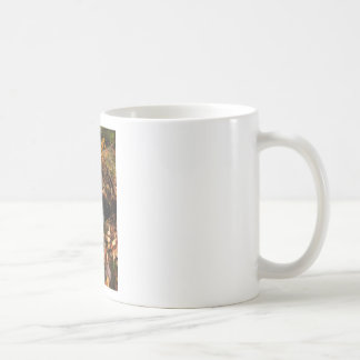 Lee Falls Cascade Coffee Mug