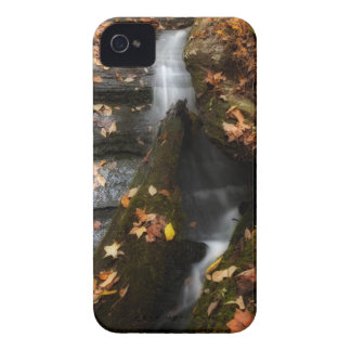 Lee Falls Cascade iPhone 4 Covers