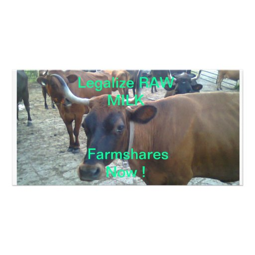 Legalize Raw Milk Farmshares Picture Card