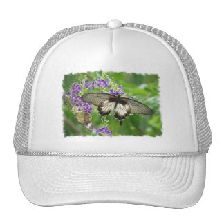 Legend of Butterflies Hat