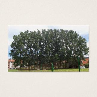 Legendary trees   Card Visit