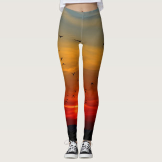 Leggings with sunset and flying birds
