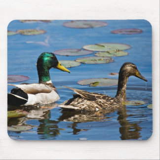 Leisurely  Paddle Mouse Pad