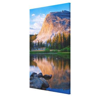 Lembert Dome scenic, California Canvas Print