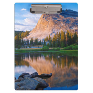 Lembert Dome scenic, California Clipboard