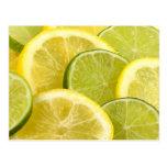 Lemon and Lime Slices Postcard