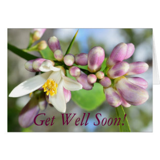 Lemon Blossom Get Well Soon! Note Card