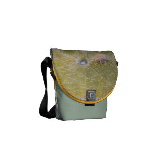 Lemon Fruit Juice Refreshing Destiny's Destiny Messenger Bags