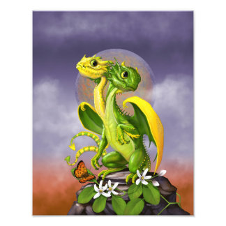 Lemon Lime Dragon 11x14 Print