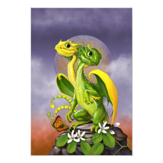 Lemon Lime Dragon 13x19 Print