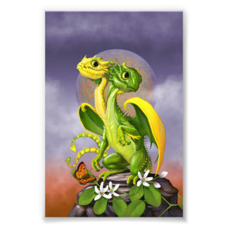 Lemon Lime Dragon 4x6 Print